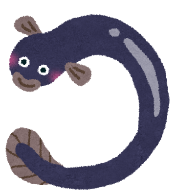 fish_dojyo